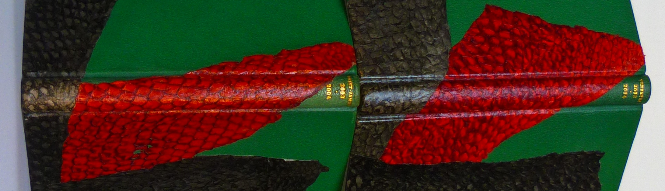 Carnets de notes (2003-2004), dos.