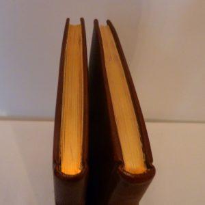 Carnets de notes (2002-2003) , tête or.