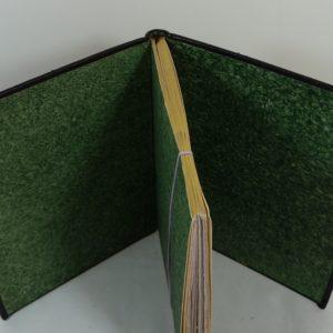 Carnets de notes (1998-1999), gardes vertes.