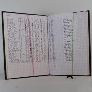 Carnets de notes (1998-1999), notes.