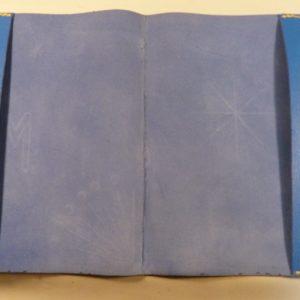 Carnets de santé pour une fratrie, bleu.