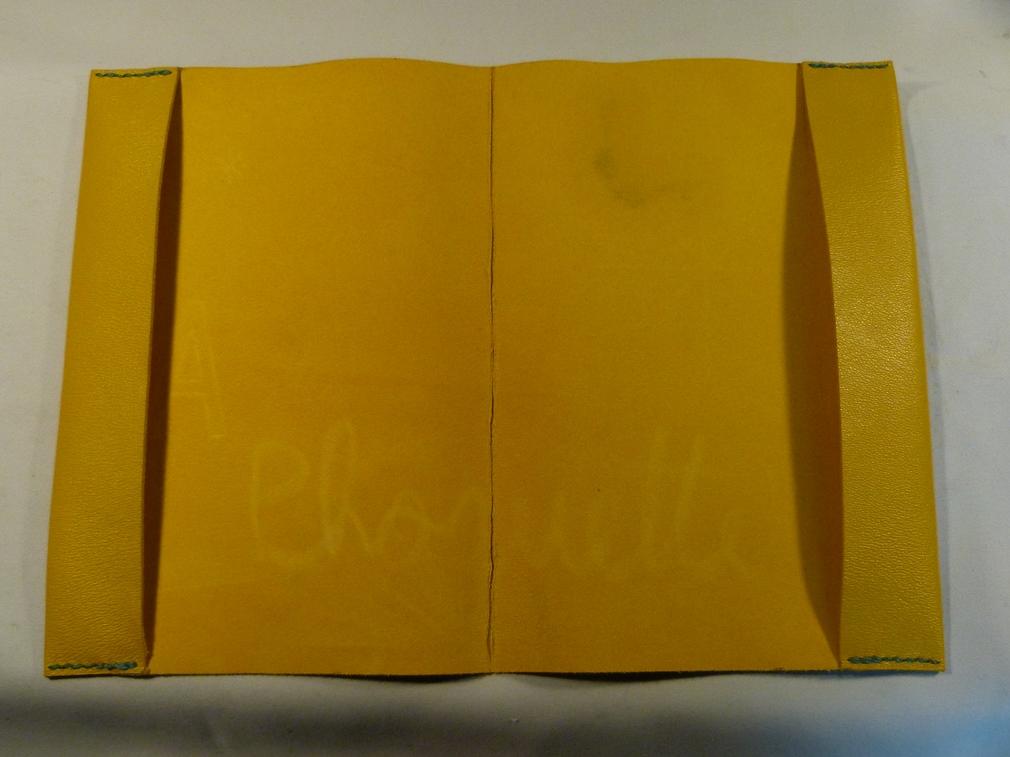 Carnets de santé pour une fratrie, jaune.