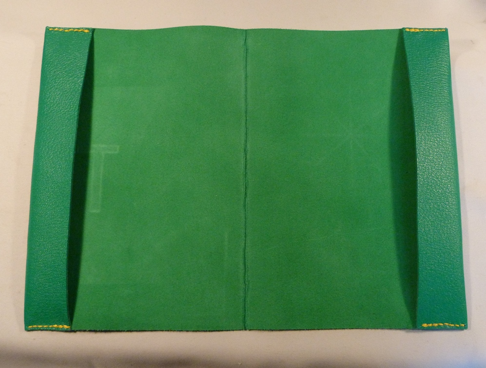 Carnets de santé pour une fratrie, vert.