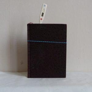 Carnet de notes (2005-2006), température