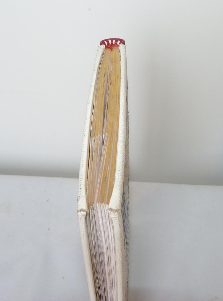 Carnets de notes (1994-1995), tête-or.