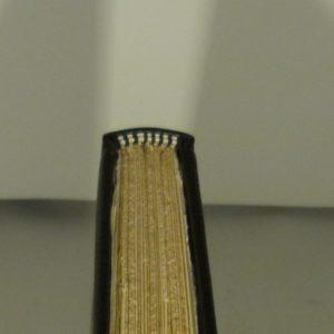 Tranchefile bicolore chapiteau.