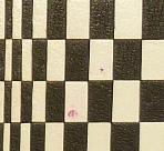 Carnets de notes (2009-2010), le jeu.