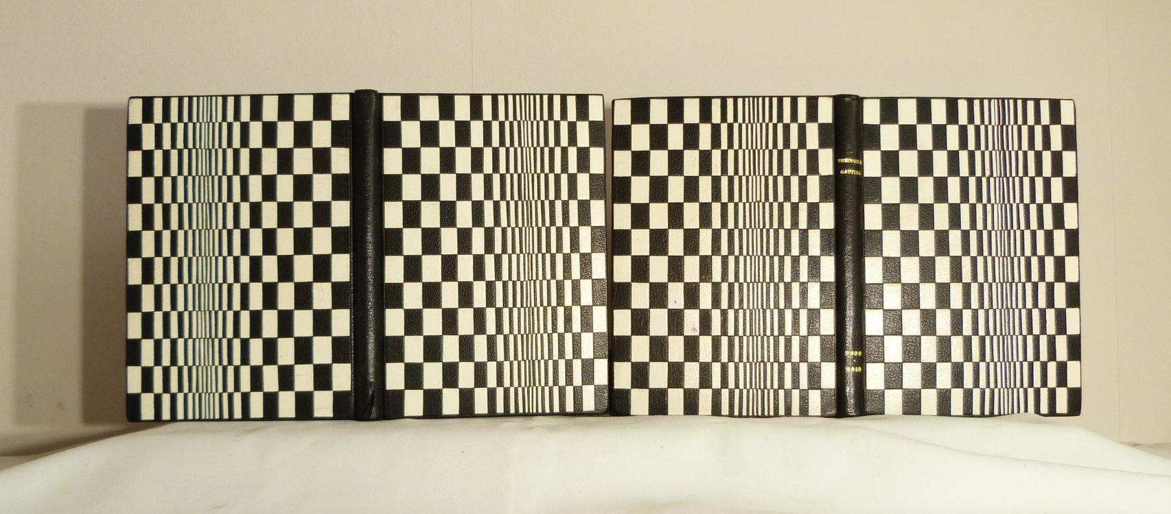Carnets de notes (2009-2010), les deux.