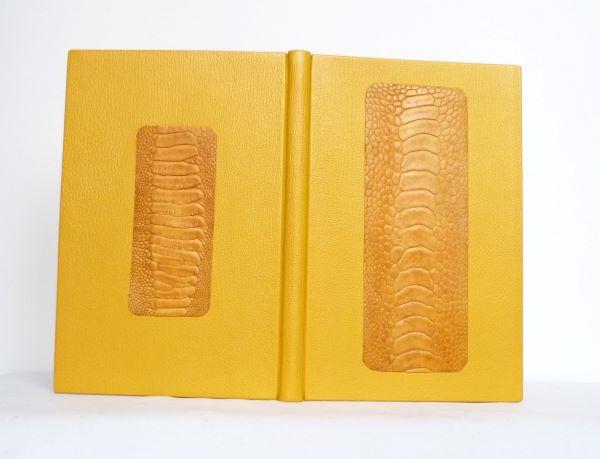 Carnet jaune à la patte d'autruche, décor.