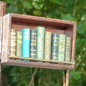 Mini-livres verts.
