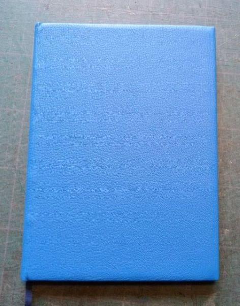 Carnet bleu.